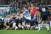 Tomás Cubelli of Argentina during the Old Mutual Wealth Series match between England and Argentina at Twickenham Stadium on Saturday 26th November 2016 (Photo by Rob Munro)