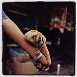 JULY 2000  --  JAKARTA, INDONESIA.  A Slow Loris for sale at Pasar Barito.