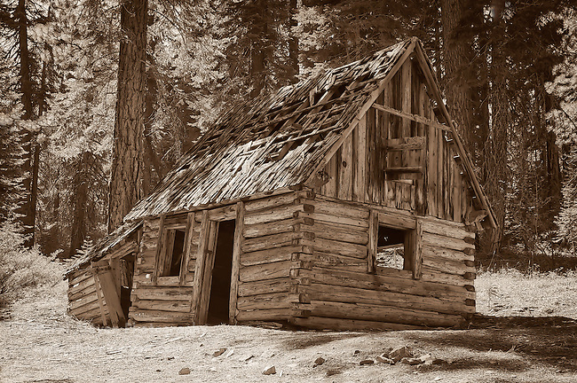Old log cabin in Plumas County, California.