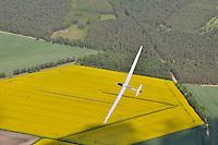 Ventus 2cxM: DEUTSCHLAND, 23.05.2010:Segelflugzeug, 18 Meter Klasse, Segelflugzeug, Flugzeug, Eigenstartfaehiges,  Faserverbundwerkstoff, Kohle, Kevlar, Schempp- Hirth Flugzeugbau, Raps, kreisen