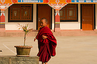 A moment in the day of a little Buddhist monk at a monastery in the Himalayan foothills of Sikkim, India