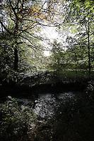 Endcliffe Park - Sheffield 2014