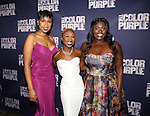'The Color Purple' - After Party