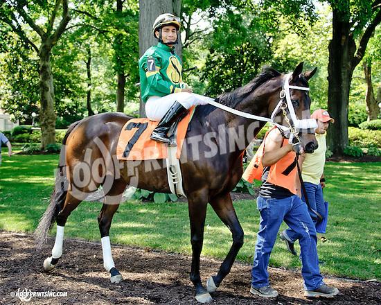 Shogun Samuri before at Delaware Park on 7/17/14