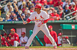 2 March 2013: St. Louis Cardinals outfielder Oscar Taveras in action during a Spring Training game against the Washington Nationals at Roger Dean Stadium in Jupiter, Florida. The Nationals defeated the Cardinals 6-2 in their first meeting since the NLDS series in October of 2012. Mandatory Credit: Ed Wolfstein Photo *** RAW (NEF) Image File Available ***