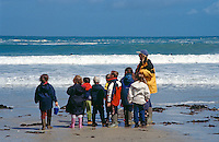 Schoolchildren taking part in a class lesson on a day trip to the beach. This image may only be used to portray the subject in a positive manner..©shoutpictures.com..john@shoutpictures.com