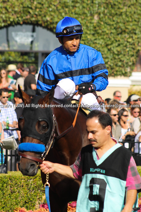 Denzel walking in the paddock at Del Mar Race Course in Del Mar, California on August 4, 2012.