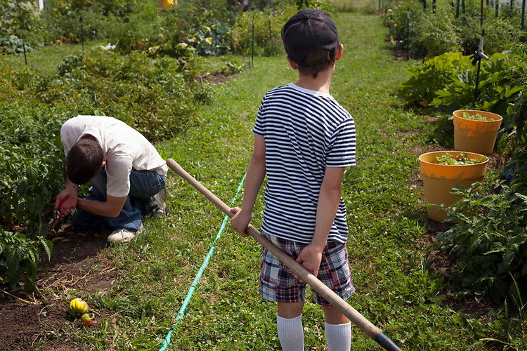 My husband grew up working in a large garden that helped feed his big family. He planted a community garden plot as a way to get fresh produce, and as a project to work on with our boys. My sons liked the idea of the garden and were proud of the results, but at times their help and interest was short-lived.