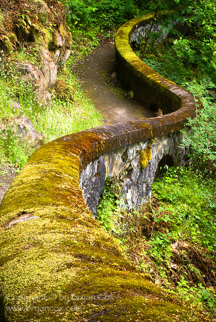 WPA path at Shepherd's Dell, Columbia River Gorge, Oregon