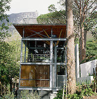 The steel and glass exterior of the house is juxtaposed against the trunk of a giant stone pine