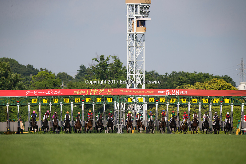 FUCHU,JAPAN-MAY 28: Starting gate opens in the Japanese Derby at Tokyo Racecourse on May 28,2017 in Fuchu,Tokyo,Japan (Photo by Kaz Ishida/Eclipse Sportswire/Getty Images)