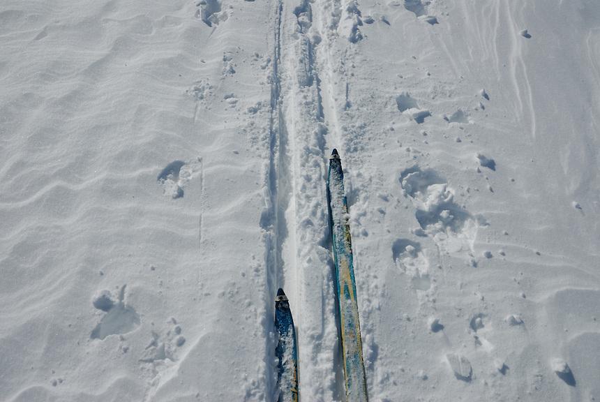 Skiis on snow
