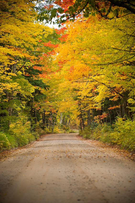 Fall color along County Road 510 in Marquette County Michigan's Upper Peninsula.
