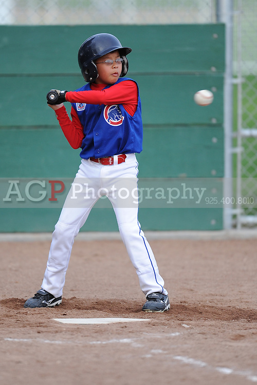 The AAA Cubs of Pleasanton National Little League  March 18, 2009.