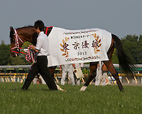 Deep Brillante wins the 79th Japanese Derby