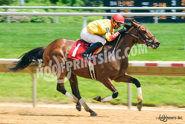Charli Sunshine winning at Delaware Park on 6/1/16