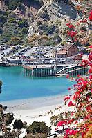 Dana Cove Park Dana Point Harbor