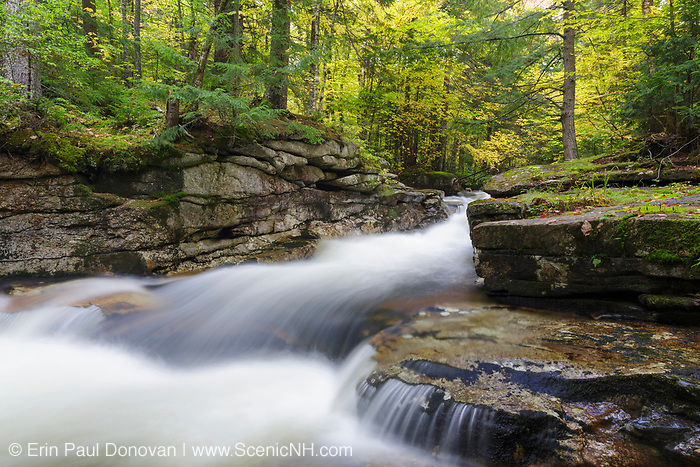 Cascade on the South Branch of the Gale River in Bethlehem, New Hampshire during the autumn months.