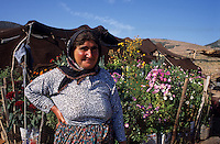 Europe/Turquie/Env de Karkutelli : Nomade dans son jardin