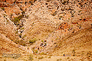 Image Ref: CA532<br />