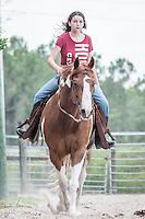 Karen horse