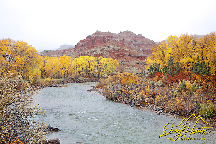 Wind River Autumn, Dubois, Wyoming,