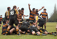 Rugby 2010-01