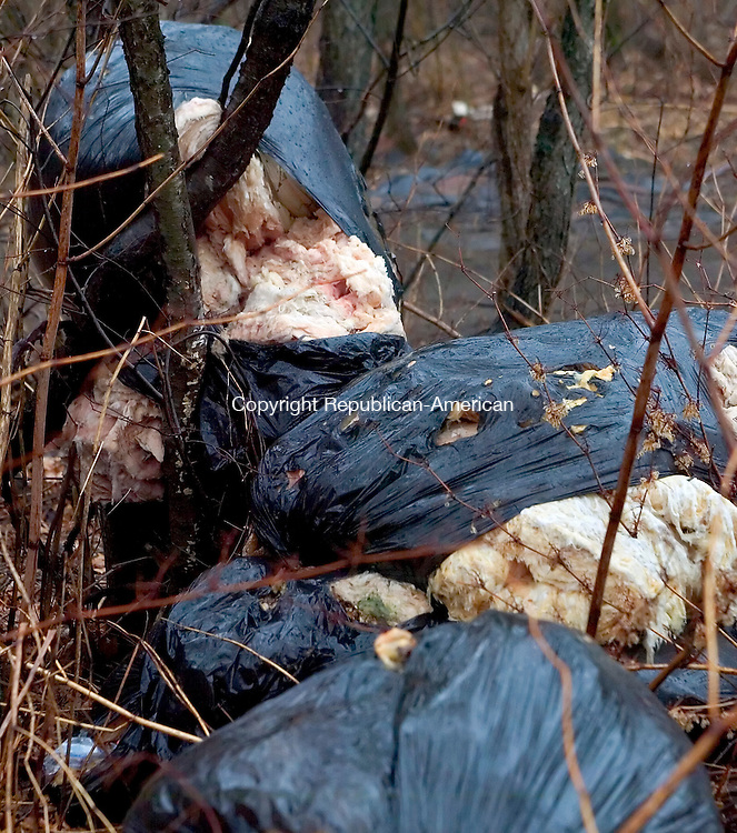 WATERBURY, CT. 12 April 2007-041207SV11--Piles of insulation sit along Platts Mills Road in Waterbury.<br /> Steven Valenti Republican-American