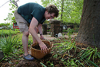 NWA Democrat-Gazette/DAVID GOTTSCHALK  LaDeana Mullinix, a master gardener, spreads mulch Thursday, April 20, 2017, in an area of Mock Park in Prairie Grove. The gardens at Mock Park are part of a Washington County Master Gardener Project. A centerpiece of the park is the Prairie Grove Spring.