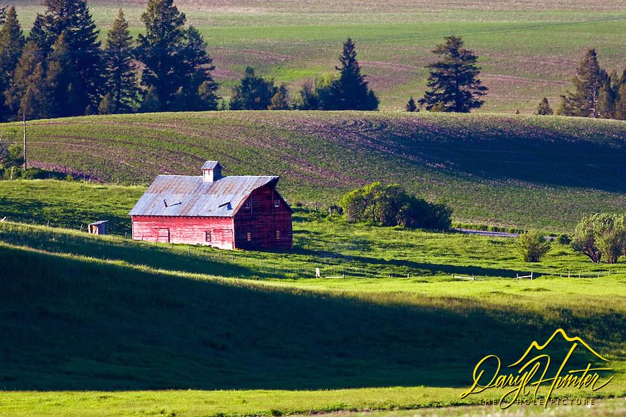 Red barn in grain field in Swan Valley Idaho