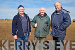 PLOUGHING: Micheal Heir,Patrick Casey and Michael O'Hanlon at the Ballyheigue Ploughing competition on Michael and Derek O'Driscoll's land,Ballyheigue on Sunday.