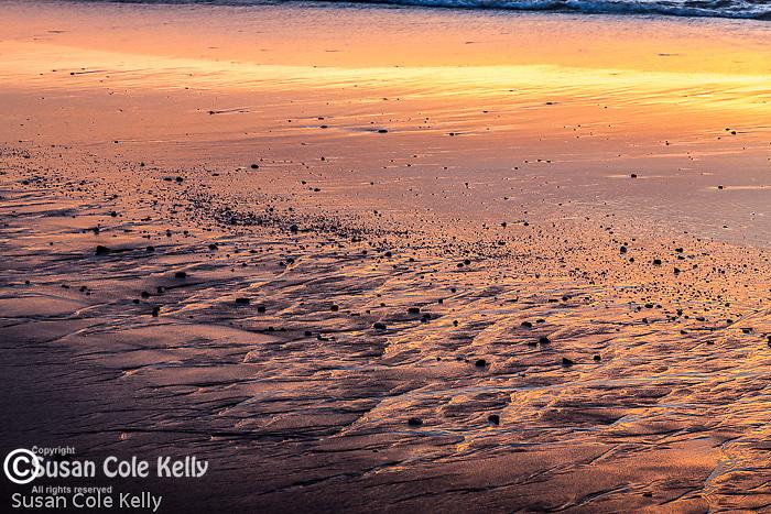 Coast Guard Beach, Cape Cod National Seashore, Eastham, Massachusetts, USA