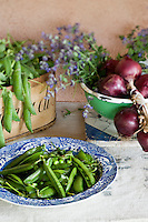 Detail of a blue and white china bowl full of freshly picked peas on an outdoor table next to a bunch of red onions