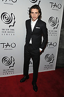 NEW YORK, NY - JANUARY 3: Timothee Chalamet at the New York Film Critics Circle Awards at TAO Downtown in New York City on January 3, 2018. <br /> CAP/MPI/JP<br /> &copy;JP/MPI/Capital Pictures