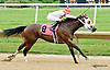 Deb's Trip winning at Delaware Park racetrack on 6/25/14