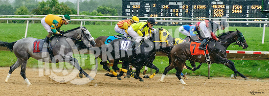 Magic Ten winning at Delaware Park on 6/8/16