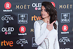 Penelope Cruz attends red carpet of Goya Cinema Awards 2018 at Madrid Marriott Auditorium in Madrid , Spain. February 03, 2018. (ALTERPHOTOS/Borja B.Hojas)