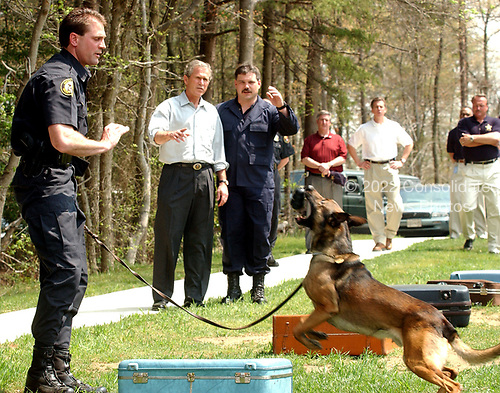 Robby, a sniffer dog trained to find explosives in luggage, alerts his handler Samuel Schrader, left, that he has found a suspect piece of luggage in this simulation for United States President George W. Bush at the James J. Rowley Training Center in Beltsville, Maryland on April 19, 2002.  Brian Mowry, an instructor, explains the operation to The President.<br /> Credit: Ron Sachs / CNP