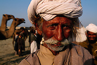 Pakistani families traveled to a camel mele to have their camels blessed.
