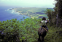 Tourists viewing the Kalaupapa peninsula below while taking the mule ride down the switchback trail, Island of Molokai