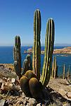 Isla Santa Catalina