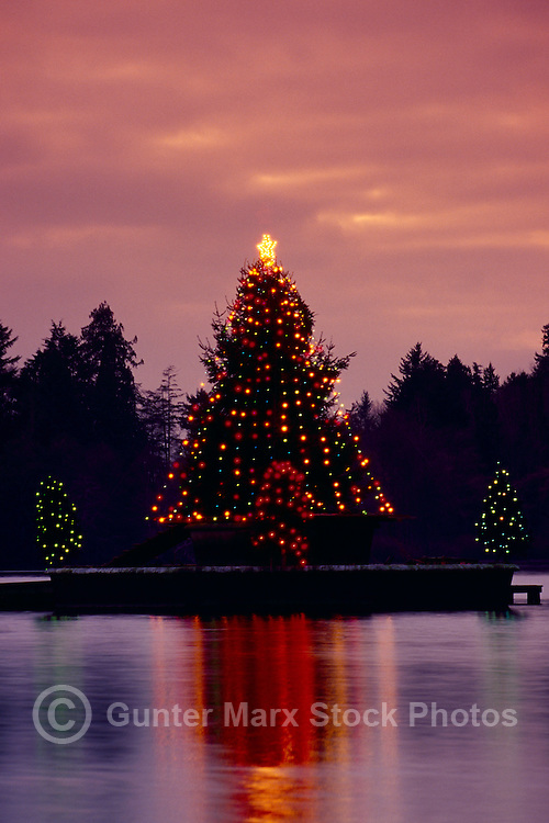 "Christmas Tree Lights reflecting on ""Lost Lagoon"" Ice at Dusk, Stanley Park, Vancouver, BC, British Columbia, Canada"