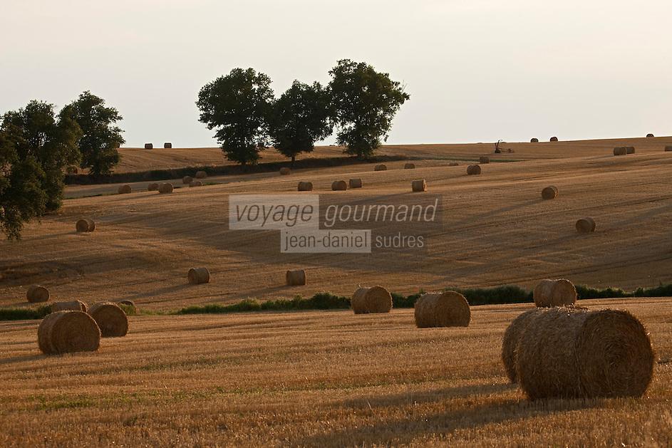 Europe/France/Midi-Pyrénées/32/Gers/Env de Condom: Paysage agricole - Rouleaux de paille dans le champ après la moisson