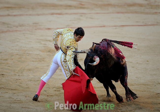Spanish matador Javier Castano performs a pass to a Miura bull during a bullfight of the San Fermin festival at Pamplona's bullring on July 8, 2012, in Pamplona, northern Spain. The festival is a symbol of Spanish culture that attracts thousands of tourists to watch the bull runs despite heavy condemnation from animal rights groups . (c) Pedro ARMESTRE