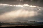 Storm with precipitation and virga, Goshute Mountains, Nevada