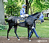 Stormin Wendy before The Beautiful Day Stakes at Delaware Park on 7/3/14