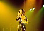 Queen 1975 Freddie Mercury..© Chris Walter..