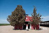 El Principal ranch, the biggest ranch providing milk to Alpura, Delicias, Chihuahua, Mexico