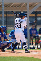 Detroit Tigers Eliezer Alfonzo (53) during a Minor League Spring Training game against the Toronto Blue Jays on March 22, 2019 at the TigerTown Complex in Lakeland, Florida.  (Mike Janes/Four Seam Images)