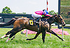 Marsden winning at Delaware Park on 7/23/16